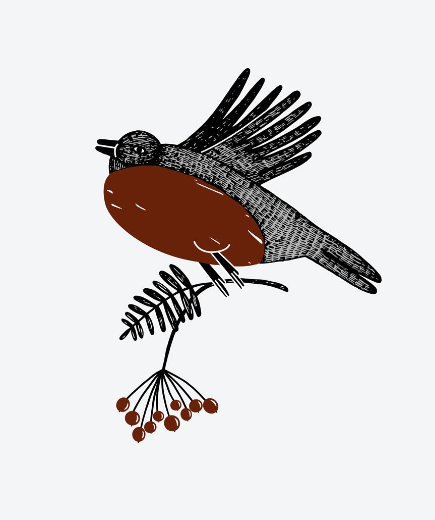 bird_red2